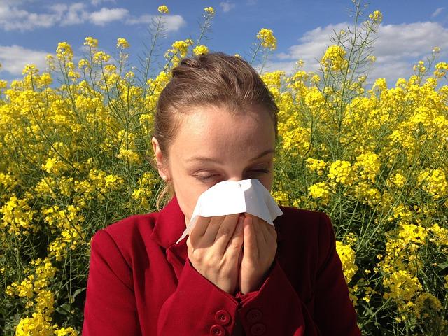 菜の花畑で花粉症のため鼻をかむ女性