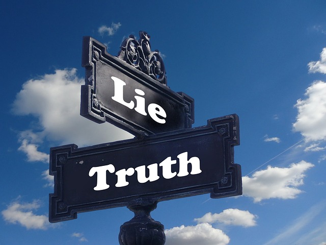 LieとTruthの看板