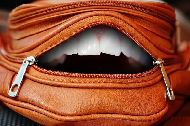 開いたカバンの口に人の様な歯が見える